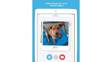 Pup Adoption Apps - The BarkBuddy App is Tinder for Puppies