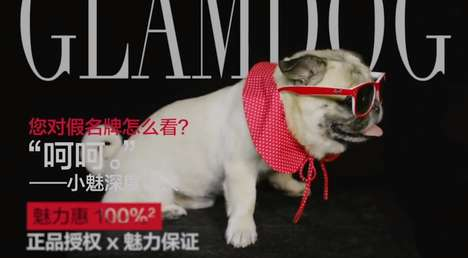 Chic Brand Spokesdogs - Glamour Sales