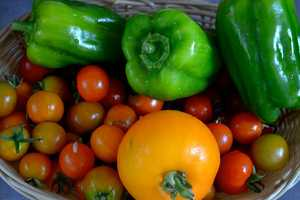Just Food Gives Access to Healthy Foods in Underserved Urbanity