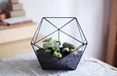 Transparent Geometry Planters - Etsy's Glass Terrarium Icosahedron is Both Decorative and Practical