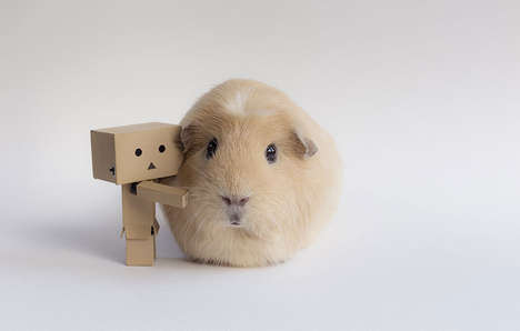 Hipster Guinea Pig Photography - This Guinea Pig Photo Series is Crafty and Adorable