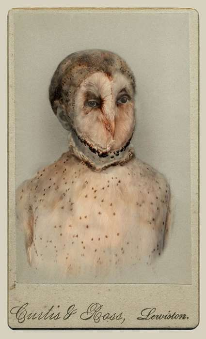 Vintage Humanimal Portraits - Aviary by Sara Angelucci Portray Creatures About to Become Ghosts