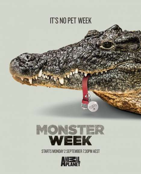Pet-Devouring Animal Ads - Hide Your Pets During Animal Planet