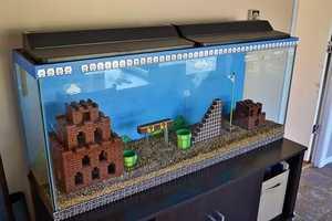 Kelsey Kronmiller Constructed a Super Mario Aquarium