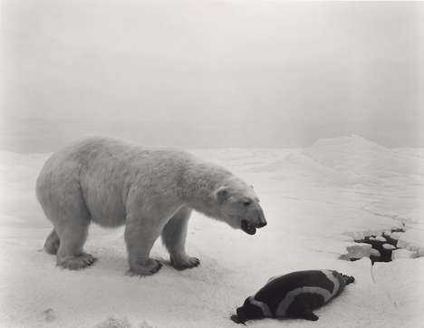 Grayscale Animal Photography - This Monochrome Museum Photo Series is Moving