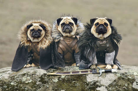 Furry Fantasy Photography - The Pugs of Westeros is Game of Thrones Recreated with Costumed Dogs