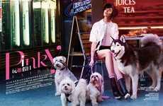 Chic Urban Editorials - Langley Fox Hemingway Stars in Harper's Bazaar China Issue