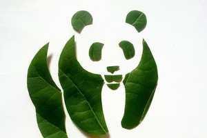 Roy Mallari Creates Pop Culture Imagery Through Leaf Art