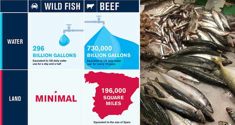 Ecological Protein Infographics - This Infograph Explains Why Seafood is the Best Protein to Consume
