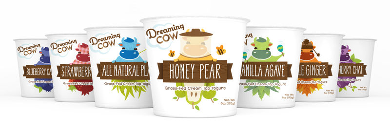 Illustrative Yogurt Packaging
