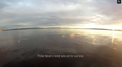 Climate Change Campaigns - This Sombre Polar Bears GoPro Video Will Haunt You