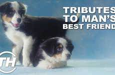 Delightful Dog Tributes - Trend Hunter's Shelby Walsh Honors Man's Best Friend with Puppy Videos