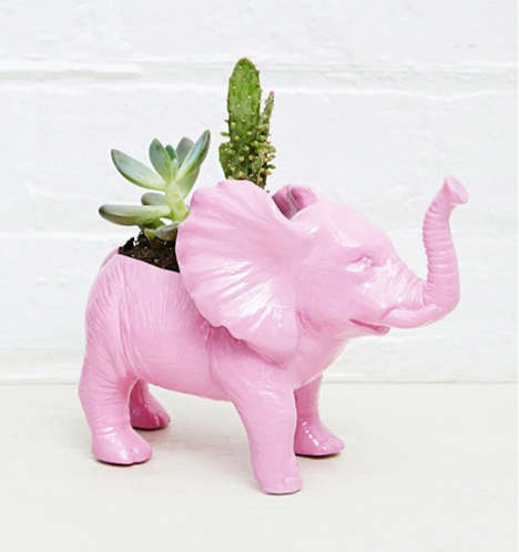 Jungle-Themed Planter Accessories - Urban Outfitters