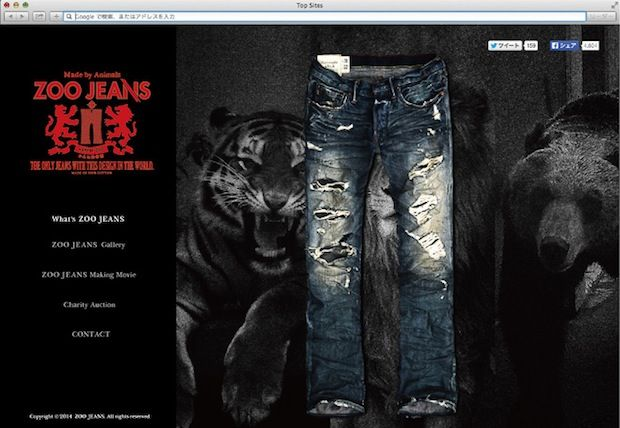 Wildly Torn Jeans