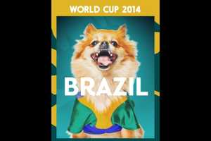 These Unbearably Cute Posters Depict Pet Dogs as World Cup Superfans