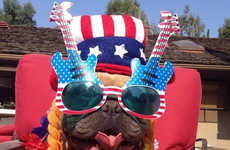 Patriotic Puppy Pictures