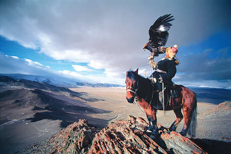 Majestic Raptor Photography - The Patagonia Birds of Prey Book Examines Relationship of Man and Bird