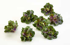 Futuristic Food Hybrids - Brusselkale is the Most Super of All the Superfoods