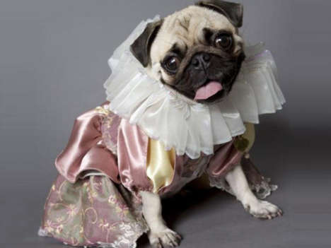 Pug-Cast Shakespearean Plays - The Production of Hamlet Will Feature a Cast Made Up Entirely of Dogs