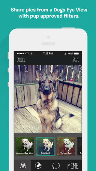 Pet Photography Apps - The BarkCam Pet Photo App Captures a Pet