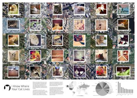 Cat-Stalking Maps -