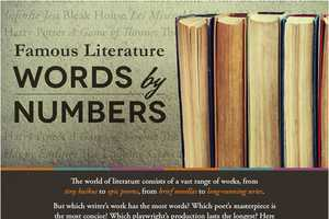 This Lengthy Infographic Examines Famous Literature By the Numbers