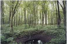 Haunting Holocaust Photos - Henning Rogge Countryside Images Captures Scars Left From WII Bombs