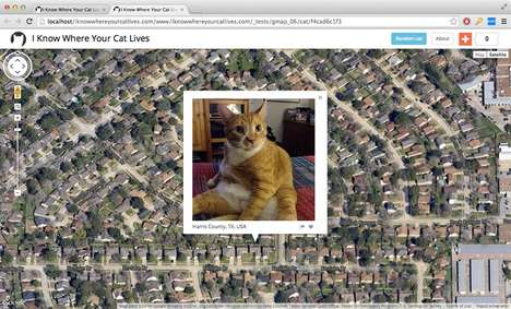 Cat Surveillance Maps -