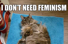 Anti-Feminist Cat Blogs - Confused Cats Against Feminism is a Hilarious Parody