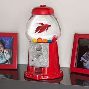 Fishbowl Gum Dispensers - This Gumball Machine Fishbowl Design is Nostalgically Kitschy