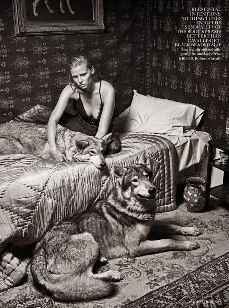Wolf Companion Editorials - The Vogue UK Photoshoot Stars a Wildly Dark Lara Stone