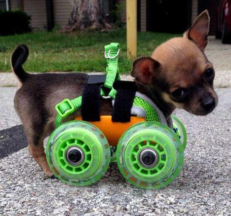 3D-Printed Chihuahua Wheelchairs - Turbo.Roo the Two-Legged Chihuahua Has a Custom-Made Wheelchair