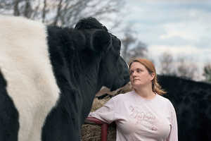 The 'Sanctuary' Photo Series Depicts Rescued Animals in Vermont