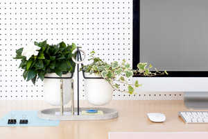 Fabrica Designed a Desk Organizer with the Plant Lover in Mind