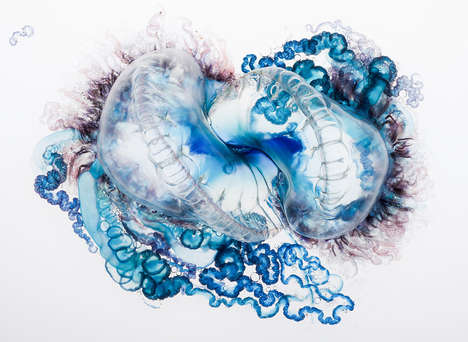 Stinging Sea Creature Photography - 'Fatal Attraction' Depicts Gorgeous & Feared Deep-Sea Stingers
