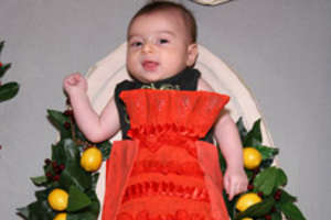 Martha Stewart's BabyBanquet