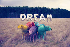 The Dream Series Inspires Us to Use Our Imaginations