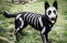 Skeletal Canine Costumes - This German Shepherd Dog is Painted Up to Look Like a Halloween Character