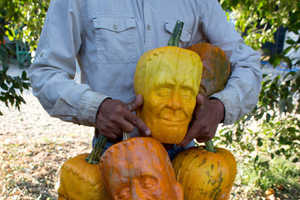 These Frankenstein's Monster Pumpkins Offer Character Without Carving