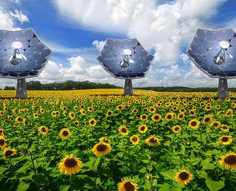 Top 75 Eco Ideas in November