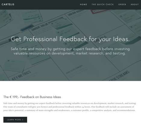 Business Feedback Services - Cartelis Offers Quick, Professional Feedback on New Business Ideas