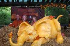 Elephantine Pumpkin Carvings