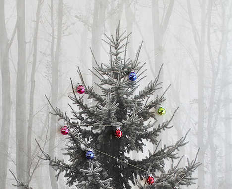 50 Alternative Christmas Tree Ideas
