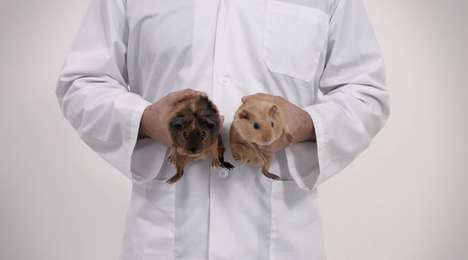 Cute Testicular Cancer Campaigns - Furballs by DentsuBos Likens Guinea Pigs to Testes