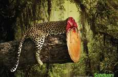 Headless Wildlife Campaigns - The Sanctuary Asia Adverts Promote the Death of Deforestation