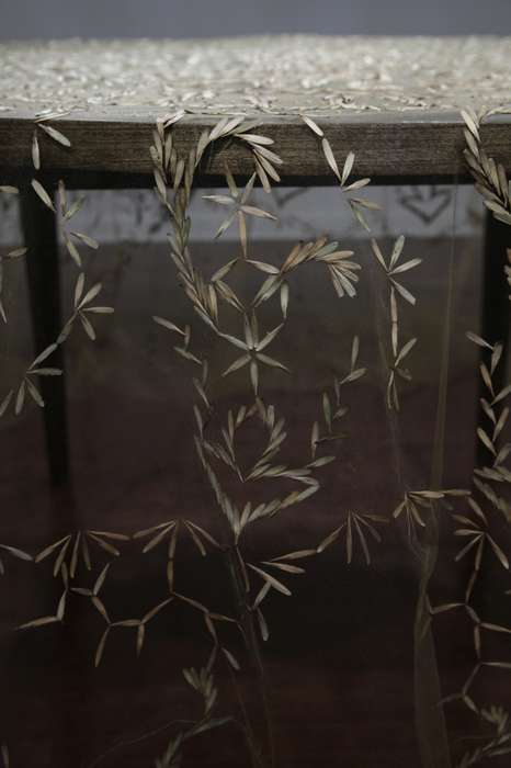 Sown Seed Tablecloths - The Rena Detrixhe Heirloom Project Uses Kernels to Create Artistic Designs