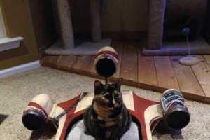 The Star Wars Landspeeder Cat Bed Offers Felines a Cozy Resting Place