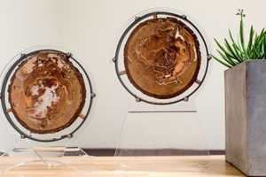 The Termitat Termite Exhibit Lets You Observe Termits In Your Own Home