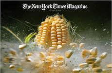Real Food Explosions As Economic Metaphors