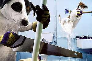 Canines Doing Chores